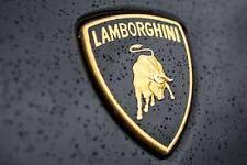 Lamborghini Aventador / Huracan front hood emblem 470853745B Brand New OEM