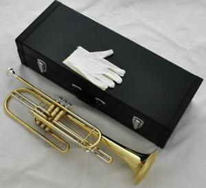 Professional Gold Bass Trumpet 3 Piston Bb Horn With Case Free Shipping