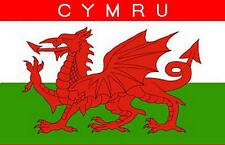 Cymru Wales Welsh 3' X 2' 3ft x 2ft Flag With Eyelets Premium Quality