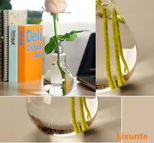 Little Transparent Stand Light Bulb Plant Flower Glass Vase Hydroponic Container