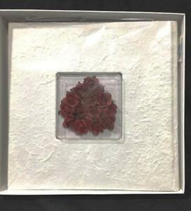 White INNOVAGE Pressed Paper Photo Album with Framed Center Heart of Red Roses