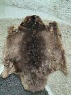 """BEAUTIFUL Canadian tanned Brown BEAVER fur pelt skin 28""""X 24"""""""