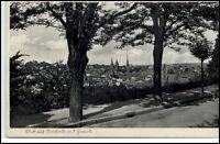 NEUSTADT a.d HAARDT ~1940 Teilansicht von einer Strasse aus Allee Bäume Baum
