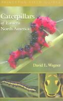 Caterpillars Of Eastern North America : A Guide To Identification And Natural...