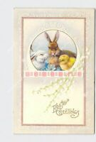 PPC POSTCARD EASTER BUNNY RABBITS CHICK FLOWERS EMBOSSED