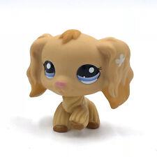 Littlest Pet Shop toys LPS toys little dog #1716 old Cocker Spaniel Dog