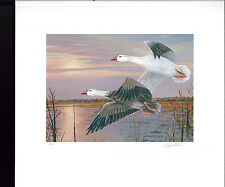 MISSISSIPPI #15 1990 STATE DUCK STAMP PRINT SNOW GEESE Governor Stamp signed #2