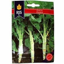 600 Seeds Cabbage Collard Kale Couve Galega Portuguese Top Quality Walking Stick