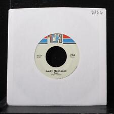 """Andy Montanez - Tuyo / No Perdono El Tiempo 7"""" VG+ Vinyl 45 TH 1245 USA 1987"""