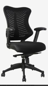 Spine Mesh  Task Chair With Adjustable Arms Lumbar Support Lockable Seat Tilt