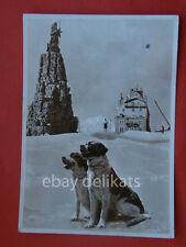 PICCOLO SAN BERNARDO d'inverno cani La Thuile Alpi Aosta vecchia cartolina