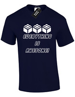 EVERYTHING IS AWESOME KIDS CHILDRENS T SHIRT TOP BRICKS BAT MOVIE FUNNY BOYS