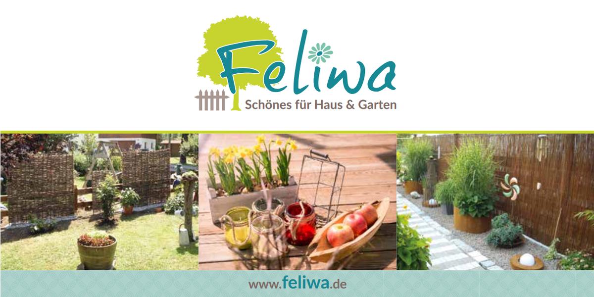 Feliwa24