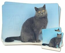 Blue Chartreax Cat Twin 2x Placemats+2x Coasters Set in Gift Box, AC-34PC