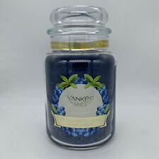 YANKEE CANDLE BLUEBERRY LARGE JAR 22 oz CANDLE NEW W/FREE SHIPPING