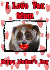 Lento Loris nmd271 Divertido Lindo A5 El Dia De La Madre tarjeta personalizado de las tarjetas de saludos
