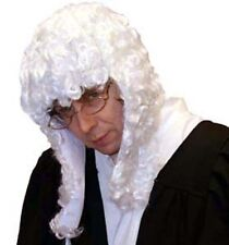 Big Wig-Courtroom-Clerical-Barrister WHITE JUDGES/JUDGE WIG one size only
