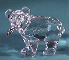 SWAROVSKI Crystal GRIZZLY CUB 261925 Nuovo di zecca Boxed RITIRATO RARO