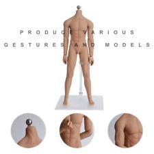 1/6 Scale Seamless Male Figure Body Super Flexible Muscular Body Steel Skelet KG