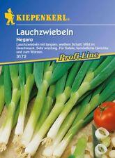Kiepenkerl - Lauchzwiebeln * Negaro * Zwiebeln 3172 Sehr wüchsig