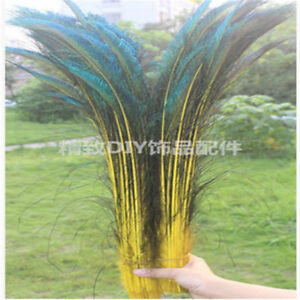 Wholesale 10-100 PCS beautiful 30-35cm/12-14 inches Peacock Feathers Sword
