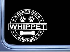 """Certified Whippet L283 Dog Sticker 6"""" decal"""
