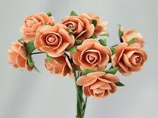 # 10 Medium Peach Roses on stems by Green Tara