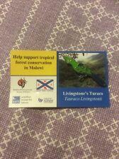RSPB Pin Badge Livingstone's Turaco