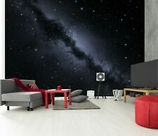 3D Starry Sky 641RAIG Wallpaper Mural Self-adhesive Removable Sticker Amy