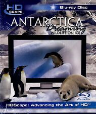 BRAND NEW BLU-RAY // ANTARCTICA DREAMING IN HD // WILDLIFE ON ICE //