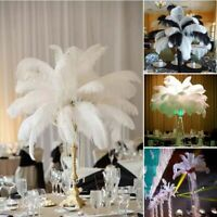 10pcs Large Ostrich Feathers Costume Wedding Birthday Party Decoration 25cm-35cm