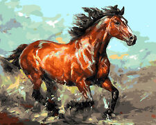"""16x20"""" DIY Acrylic Paint By Numbers kit Oil Painting On Canvas Running Horse 008"""