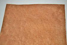 Madrona Burl Raw Wood Veneer Sheet 13 X 18 Inches 142nd G8627 44