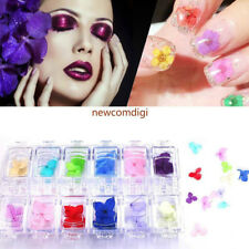 DIY Colorful 3D Decorated Real Dry Dried Flower for UV Gel Acrylic Nail Art Tips