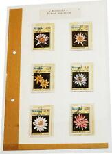 °°° NICARAGUA FLORES ACUATICAS °°° serie 6 valori 1981