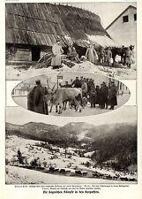 Karpaten Uzsokpaß Deutsche und österr.- ungarische Soldaten Bilddokument von1915