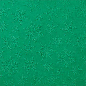 Stampin Up Winter Snow Cut and Emboss Dies 3D Embossing folder NEW Christmas