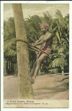 Postcard - A Toddy Drawer, Madras, India - Early Century