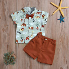 2pcs Baby Clothes Kids Boy Animal Top Shirt Shorts Outfits Set Casual Suit 1-6T