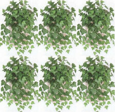 "6 OXFORD  IVY BUSH 23"" ARTIFICIAL GREENERY PLANT SILK POOL PATIO HOME DECOR"