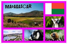 MADAGASCAR - SOUVENIR NOVELTY SIGHTS FRIDGE MAGNET - BRAND NEW - GIFT