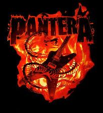 PANTERA cd lgo SNAKE GUITAR IN FLAMES Official SHIRT SMALL New dimebag darrell
