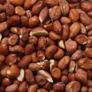 Top Quality Premium Grade Whole Bird Peanuts Nuts For Wild Birds 5kg/10kg/25kg