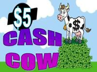 THE $5 CASH COW PAYMENT SYSTEM WEBSITE FOR SALE, A WORK AT HOME ONLINE BUSINESS.