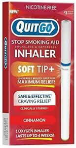 Quit Smoking Aid Oxygen Inhaler Nicotine Free Stop Smoking Support (Cinnamon)