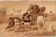 1905 U.K. - Cats and monkeys used postcard