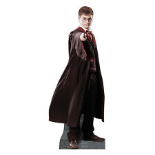 HARRY POTTER Daniel Radcliffe Lifesize CARDBOARD CUTOUT Standup Standee Poster