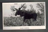 1956 Edson Alberta Canada RPPC Real Photo Card Vintage Postcard Cover