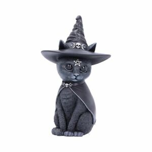 Purrah 13.5cm Purrah Witches Hat Occult Cat Figurine By Cult Cuties .