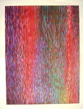 Piero Dorazio grande serigrafia 110x80 con SCONTO